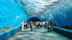 Underwater world, Pattaya, Thailand