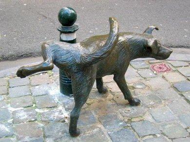 Het Zinneke, Brussels