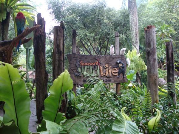Wildlife Park, Sunway Lagoon, Kuala Lumpur
