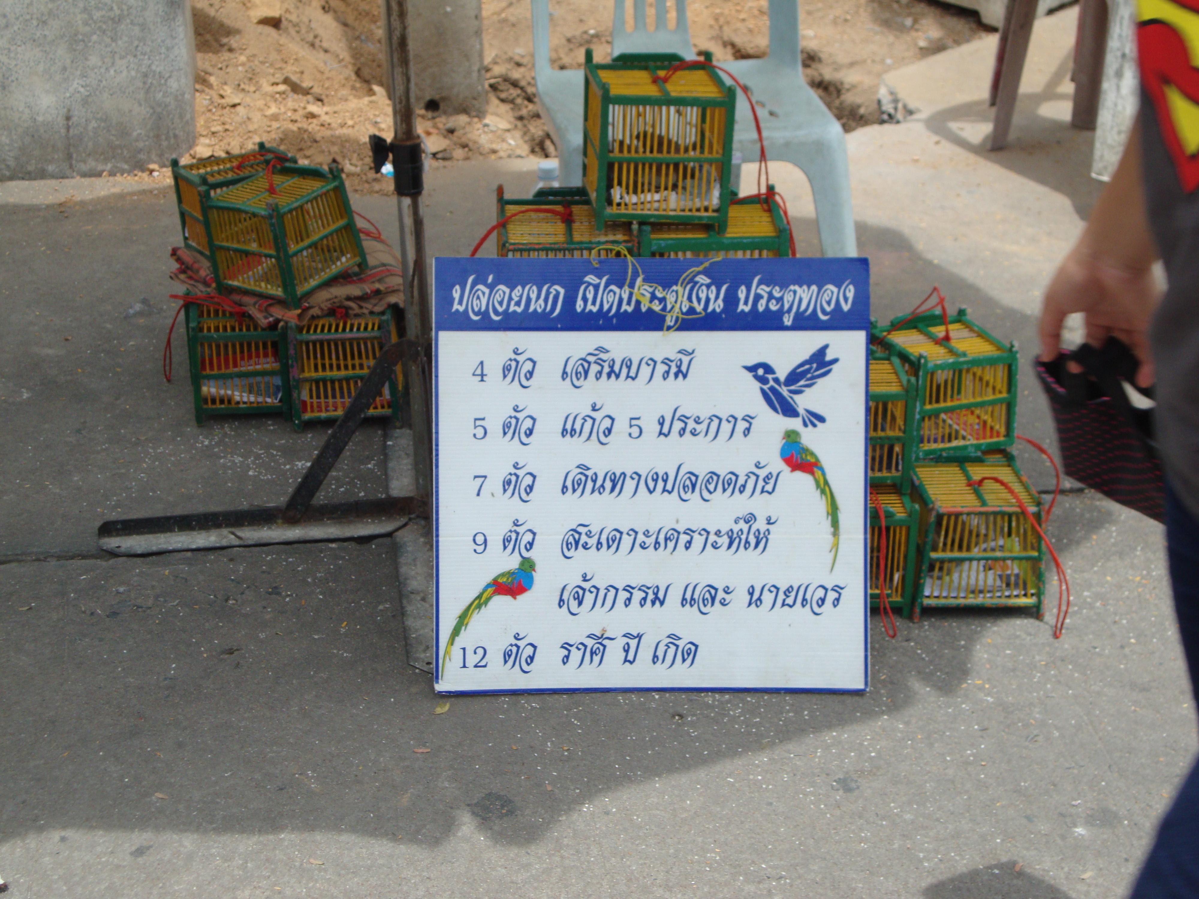 Free the birds, Bangkok, Thailand
